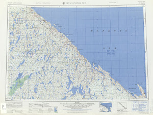 Thumbnail U. S. Army map nr37-10