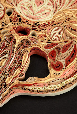 Anatomical Cross-Sections in Paper by Lisa Nilsson Seen On www.coolpicturegallery.us