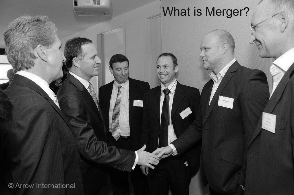 definition meaning of merger