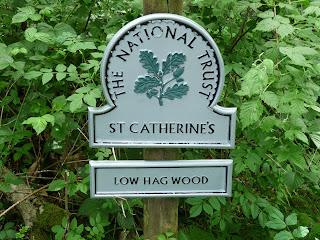 Low Hag Wood