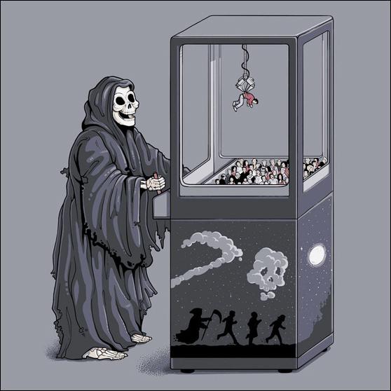 morte Morte