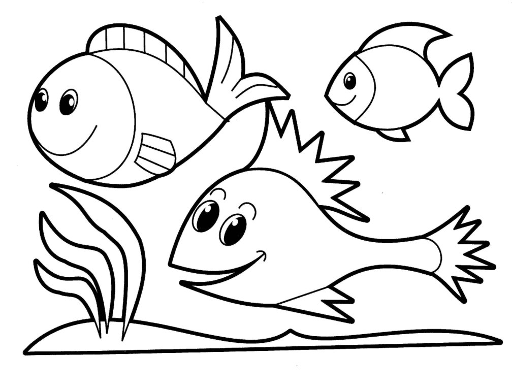 Wild Animal Coloring Pages Animal Identification drawings  - free printable coloring pages for kids animals