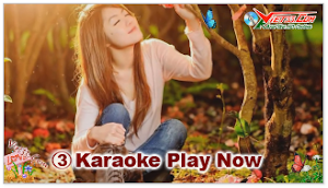 Karaoke - Tỳ Bà (Beat)