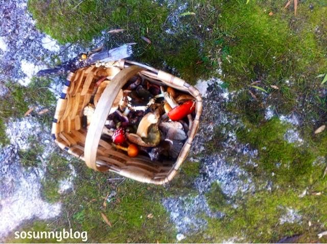 http://sosunnyblog.blogspot.com.es/2013/12/bye-bye-2013.html