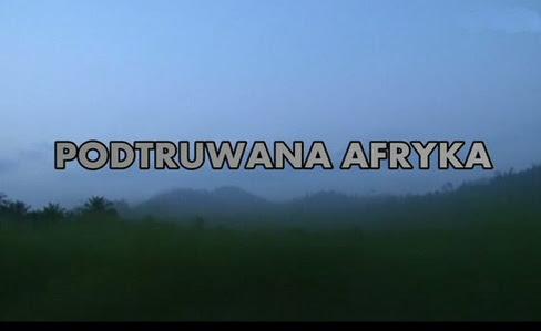 Podtruwana Afryka / Nkapa, une affaire africaine (2010) TVRip.XviD / plsub