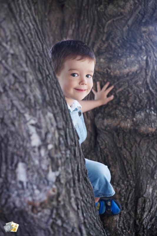 Мальчик, дерево