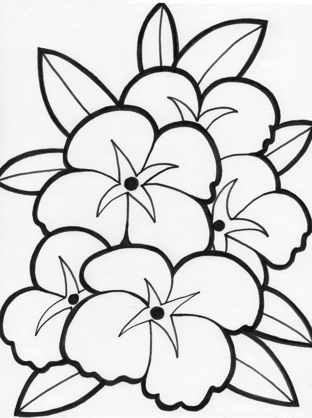 Free Flower Coloring Pages Education  - free flower printable coloring pages