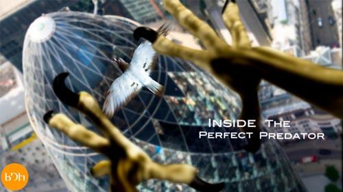 Perfekcyjny ³owca / Inside The Perfect Predator (2010) PL.1080i.HDTV.x264 / Lektor PL