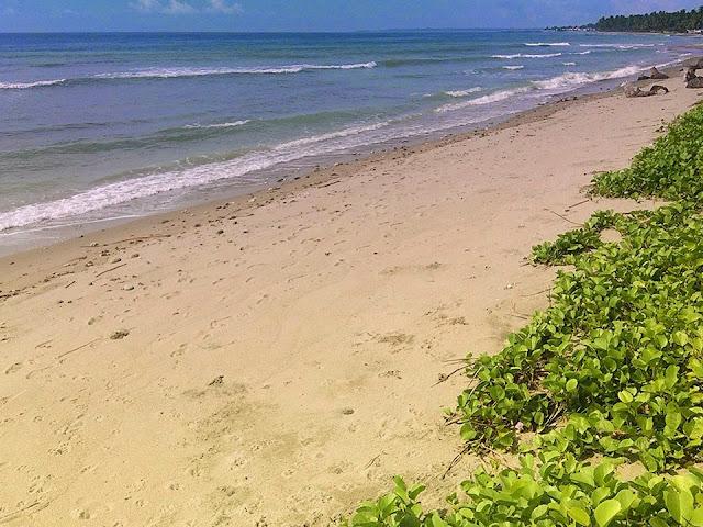 objek wisata pantai wai tawar polman