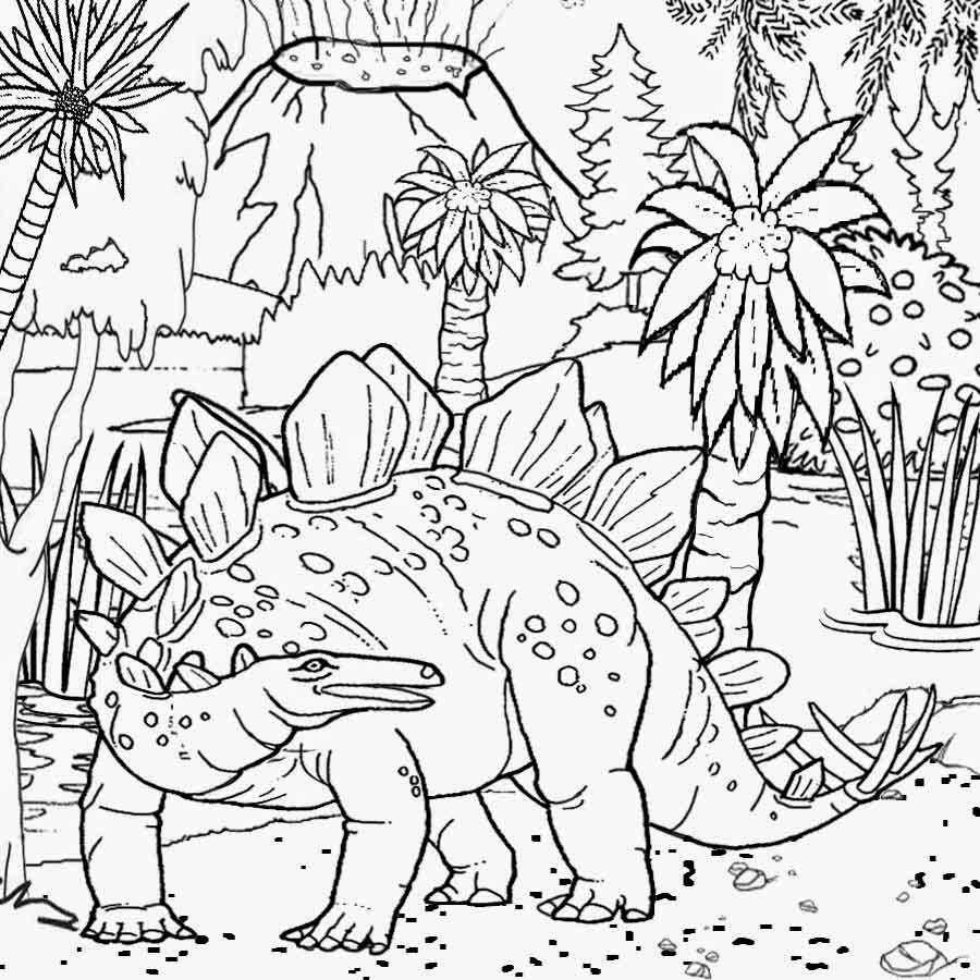 Tropical Rainforest Coloring Pages Cartoon Wallpapers