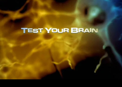 Rusz G³ow± / Test Your Brain (2011) PL.TVRip.XviD / Lektor PL