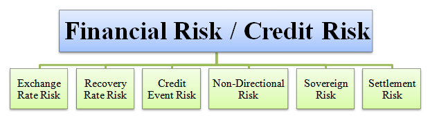 financial or credit risk