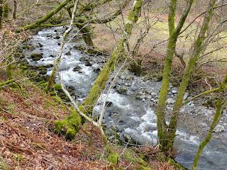 Newlands Beck near Chapel Bridge in Little Town