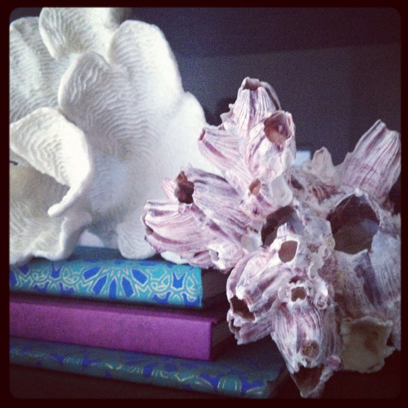 Transforming Tuesdays: Coral etc. inspiration