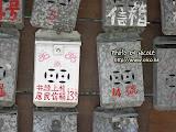 傳統的灰色鐵信箱,經過油漆也可以變得很精緻。