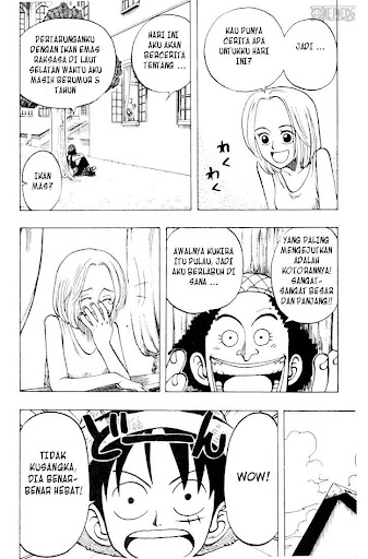One Piece 25 page 10
