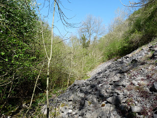 A section of scree nearly blocks the way