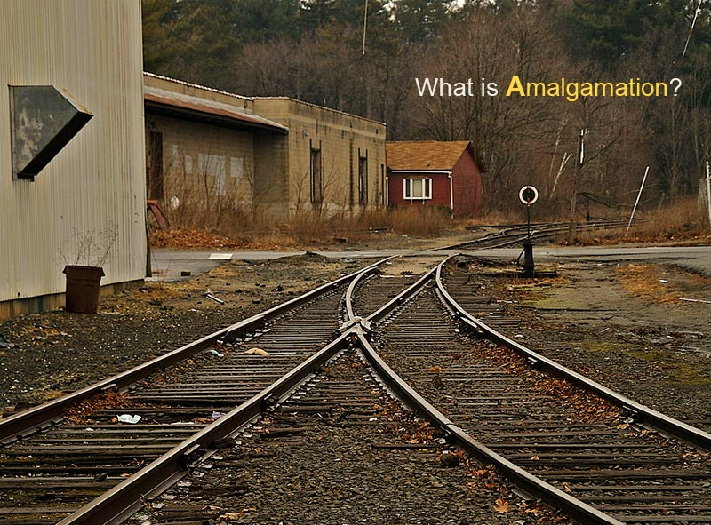 definition and meaning of amalgamation