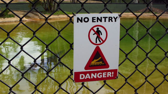 "A warning sign on one of the crocodile enclosures. You can see a ""salty"" lurking underwater to the left of the sign."
