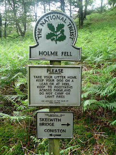 National Trust - Holme Fell
