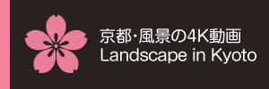 京都・風景の4K動画 Landscape in Kyoto