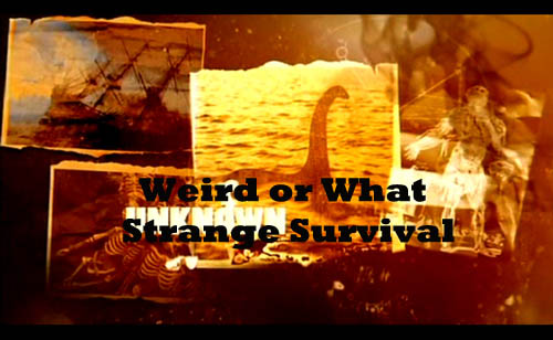 Wyja¶niæ niewyja¶nione Cudowny upadek / Weird or What Strange Survival (2010) PL.TVRip.XviD / Lektor PL