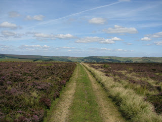 Path across Rod Moor