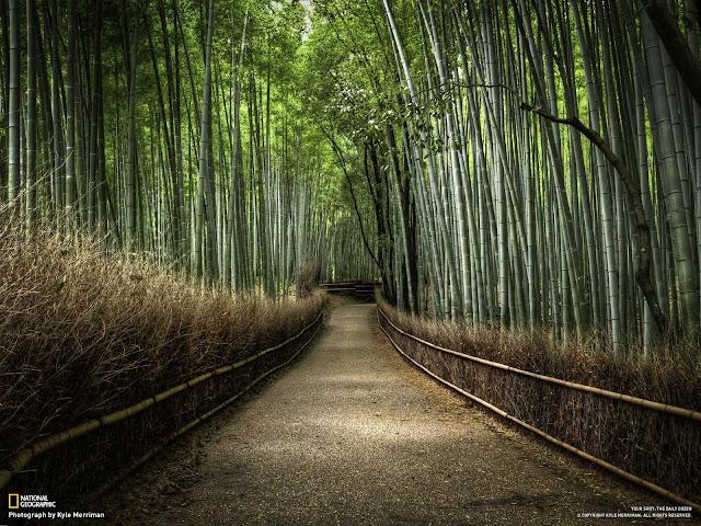 Amazing Landscapes of Earth | Cool Pictures Seen On www.coolpicturegallery.us