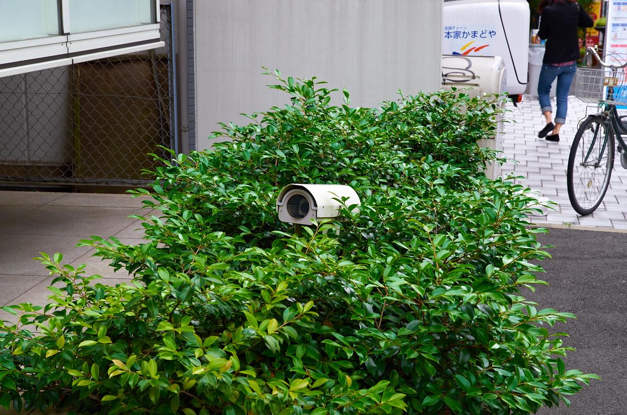 Shinjuku Mad - Streams of consciousness 12