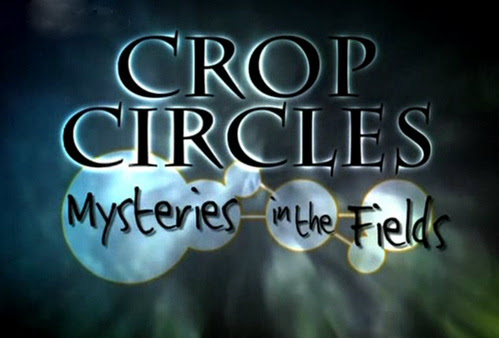 Kr�gi w zbo�u / Crop Circles Mysteries in the Field (2002) PL.TVRip.XviD / Lektor PL