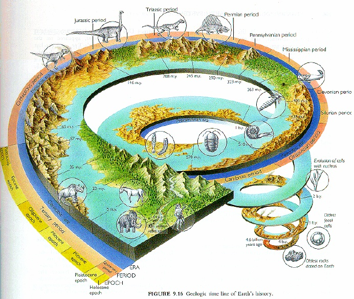 an analysis of the theory of evolution on the beginning of earth