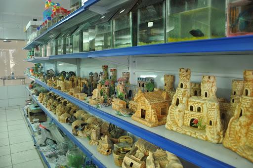 Zoona Rural Pet Shop, R. Francisco Marçal, 43 - Pau dos Ferros, RN, 59900-000, Brasil, Loja_de_animais, estado Rio Grande do Norte