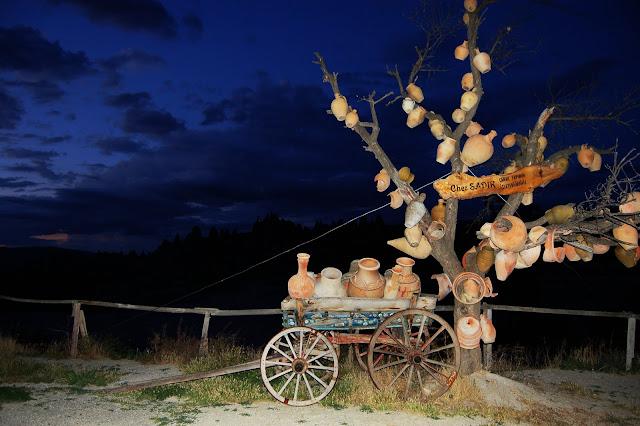 Турция: Дерево в Горшках