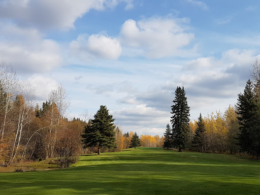 Grouse Nest Golf Course, 53318 Range Rd 31, Carvel, AB T0E 0H0, Canada, Golf Club, state Alberta