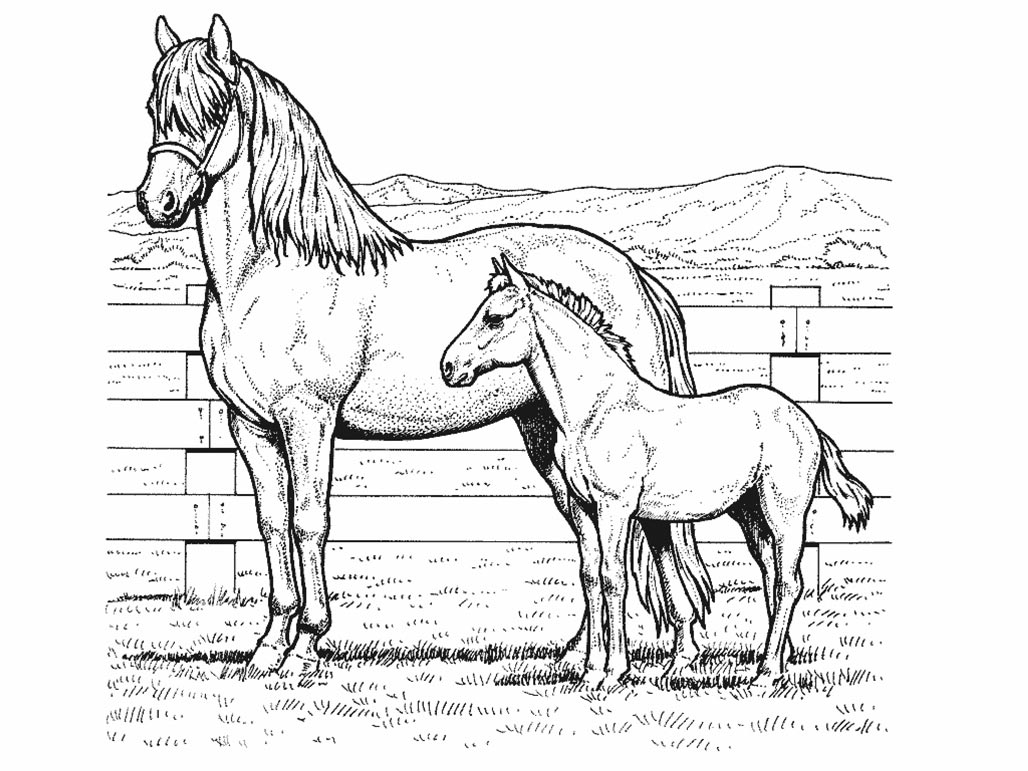 Horses coloring pages printable games free coloring pages