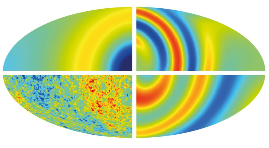 Cosmology safe as universe has no sense of direction