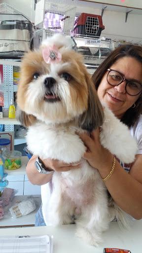 Pet Shop Dom Pet, Rua Padre Valdevino, 306 - Joaquim Távora, Fortaleza - CE, 60135-040, Brasil, Loja_de_animais, estado Ceará
