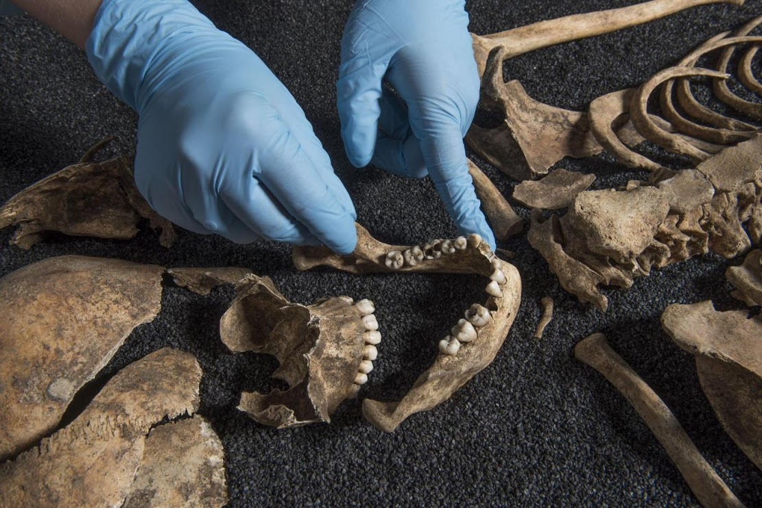 Two ancient Chinese skeletons found in London Roman cemetery