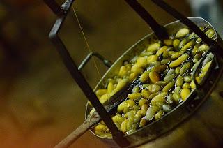 Wizyta na farmie jedwabiu, część 4: koniec miłości do robaczków - kokony z zawartością gotuje się i powoli wyciąga długą nić jedwabiu. Robaki oczywiście również zostają ugotowane. W Korei i Japonii przynajmniej zostają później zjedzone jako przysmak, tu lądują na śmietniku i tak kończy się ich żywot.