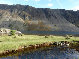 The Screes