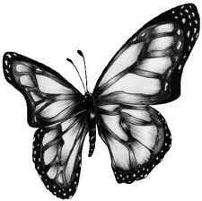 Mariposa en colores grises