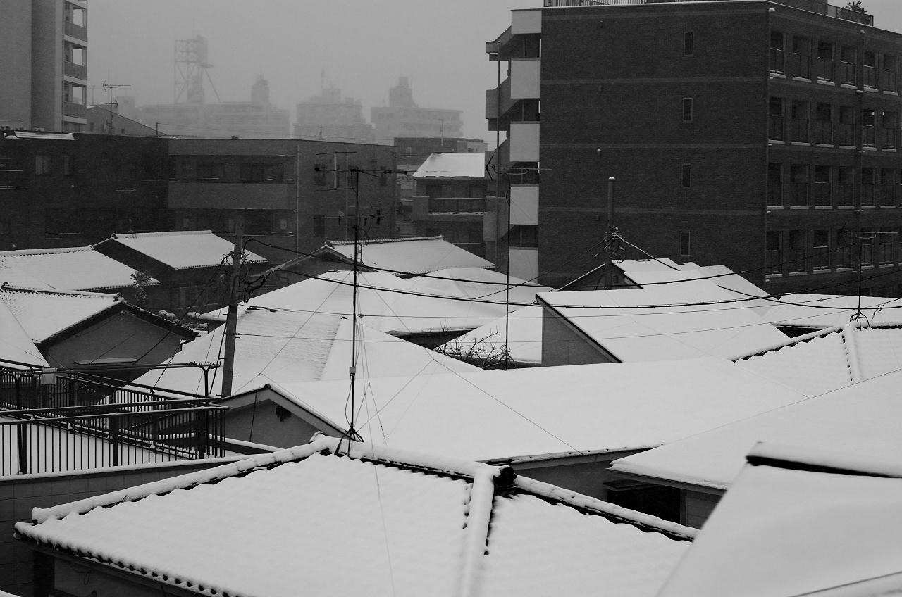 Shinjuku Mad - Love spells cast jealously white shadows 02