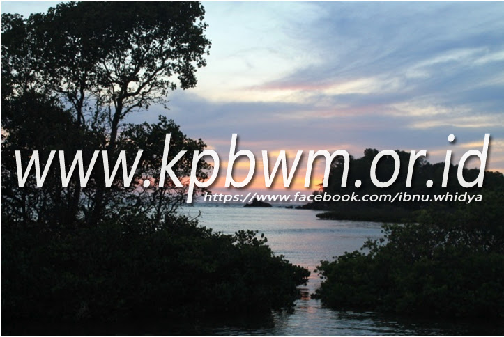 eksotisme pantai taraujung pamboang majene