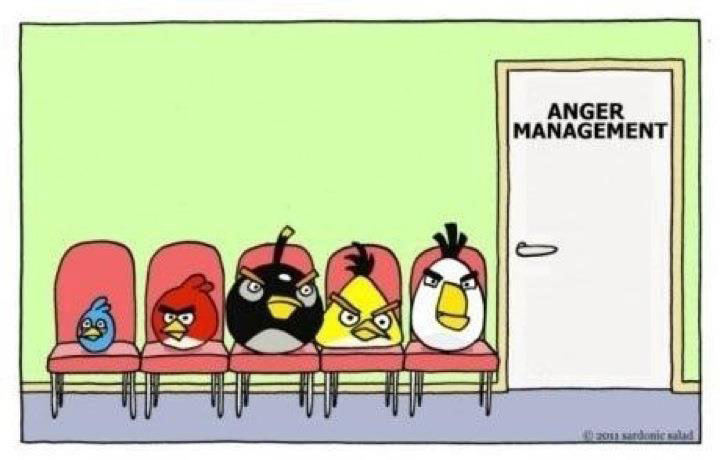 Angry birds attend anger management