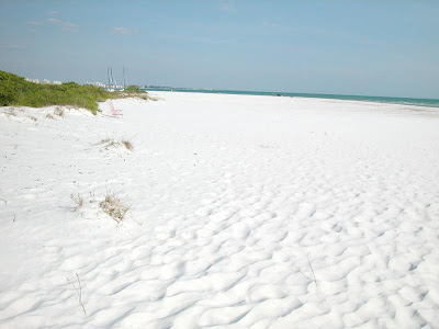 White and fine sand beaches at Siesta Key Clearwater Florida image