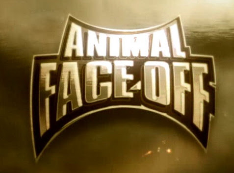 Starcie bestii / Animal Face Off (2004) PL.TVRip.XviD / Lektor PL