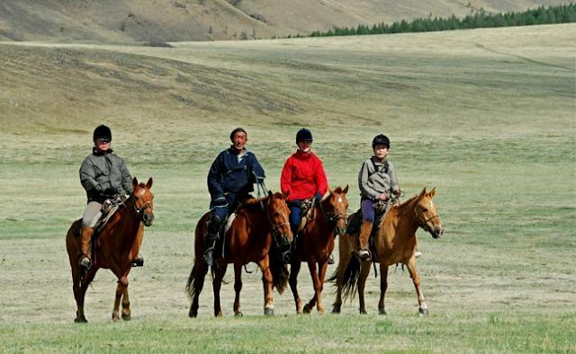 Mongolian Horses Seen On www.coolpicturegallery.us