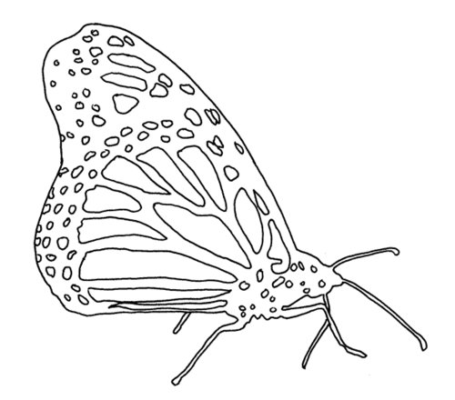 Kids-Butterfly printables, crafts, coloring pages, clip art on  - monarch butterfly coloring pages