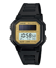 Casio Standard : LTP-2069D-1AV