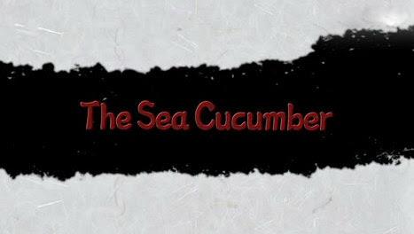 Kochajmy strzykwy / Sea Cucumber (2008) PL.TVRip.XviD / Lektor PL